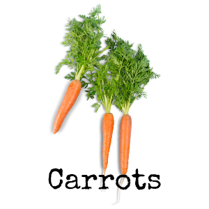 Carrots Healthy Harvest Of North Iowa